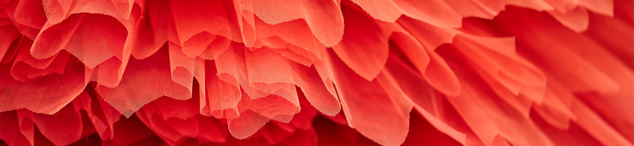 Red tutu, the colour worn by our 3rd Year girls. Photo: Schuhlelewis.com